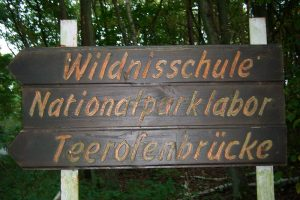 Schild Wildnisschule